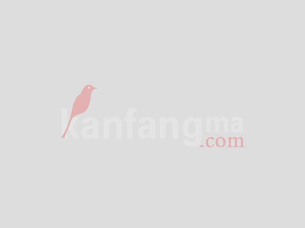 七彩云南古滇名城花里大观小院 项目评测